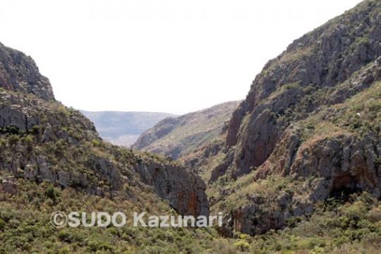 Black Eagleの巣がある峡谷